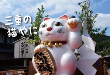 三重県の猫スポット