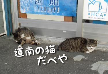 北海道/道南の猫スポット 11選