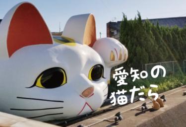 【2021年版】愛知県の猫スポット(名古屋市以外)33選