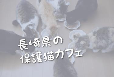長崎県の里親募集型の保護猫カフェ